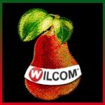 """Углубленный курс Wilcom """"Цветовые переходы. Фрукты"""""""